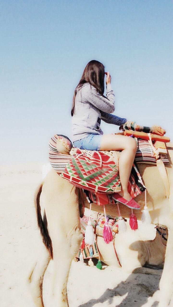 Camel ride at sealine beach, Doha Qatar.