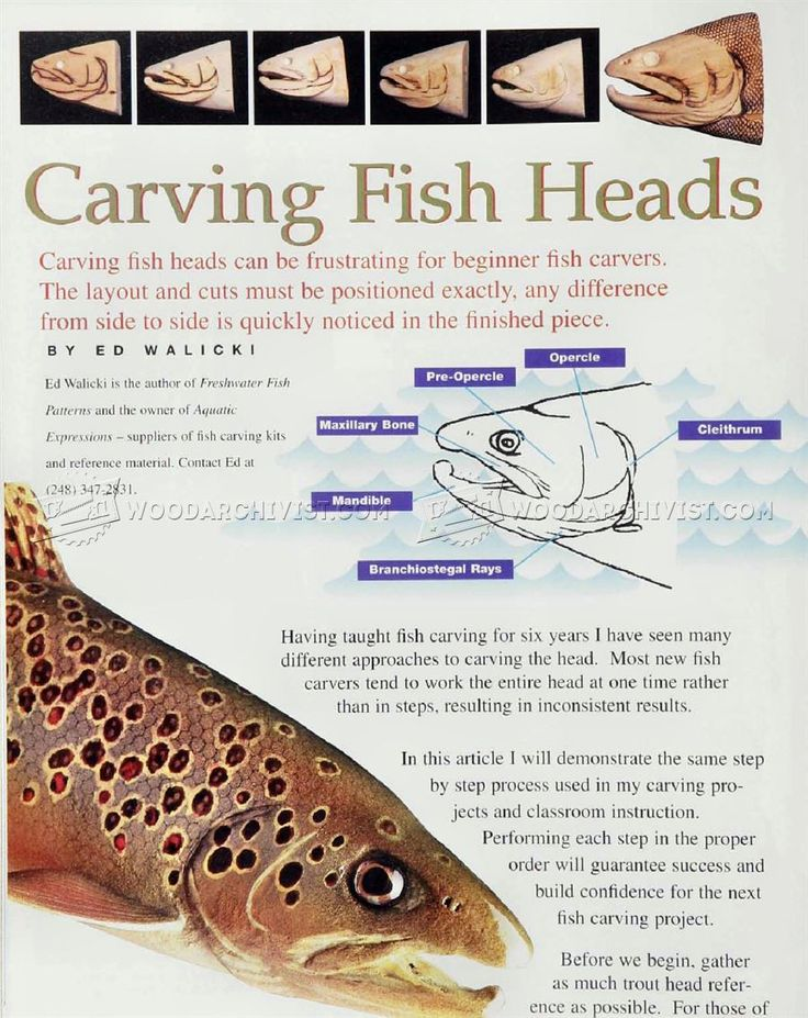 Best fish carving images on pinterest woodcarving