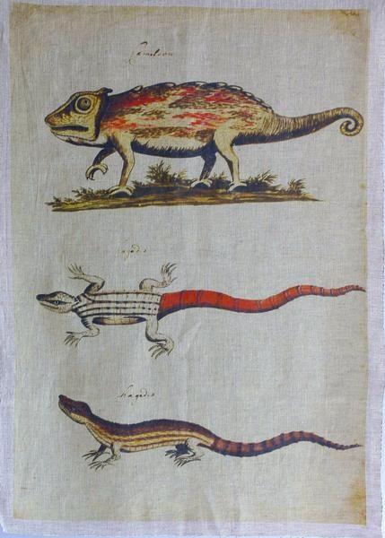 Chameleon Panel 260x150cm