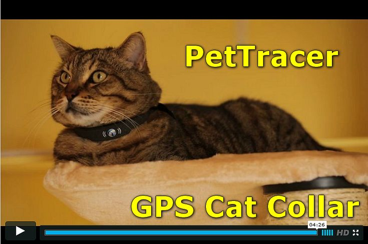 petTracer, the world's first GPS cat collar! petTracer knows your cat's whereabouts! This GPS-cat collar wears just like any regular collar and is as comfortable as possible for a cat to wear.