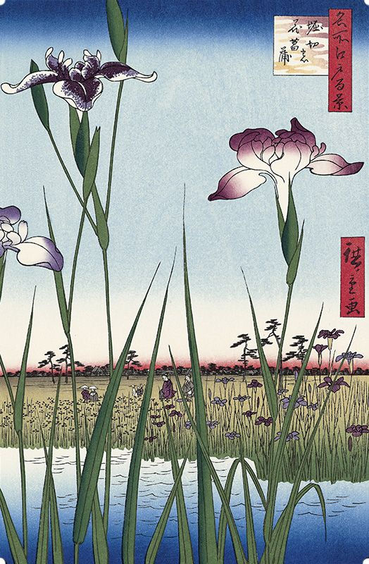 Hiroshige Utawaga / the series 100 views of famous places in Edo-Horikirinohanashoubu 歌川広重 名所江戸百景  堀切の花菖蒲