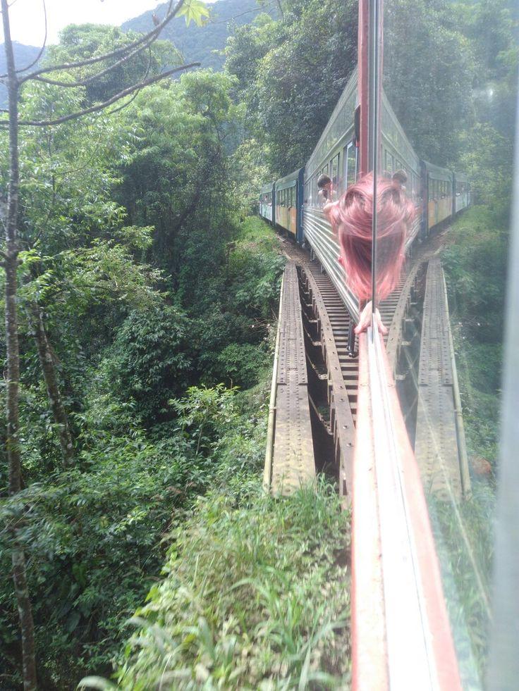 Passeio de trem, Curitiba - Morretes (28/12/16)