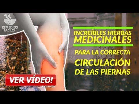 Hierbas Medicinales para la Correcta Circulación de las Piernas - Circulacion Sanguinea - YouTube