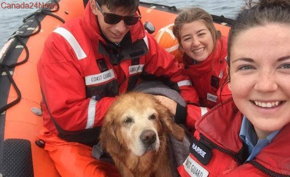 Canadian Coast Guard rescues dog off Nova Scotia shore