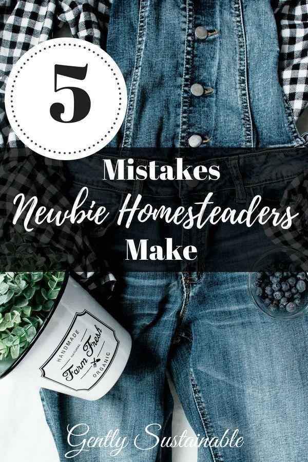 5 mistakes newbie homesteaders make with best of homesteading rh pinterest com