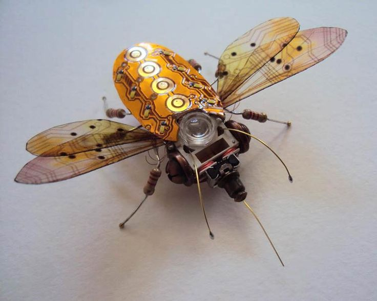 Computer-Component-Bugs-7
