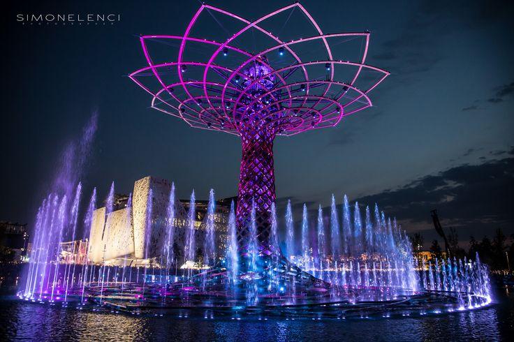 Expo 2015. Albero della vita. Foto di Simone Lenci  #expo #expomilano2015 #alberodellavita #treeoflife #italia #palazzoitalia