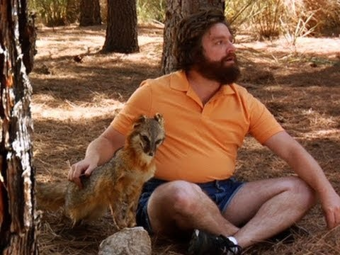 Zach Galifianakis is the snuggler and he will snuggle you back to health... #timanderic