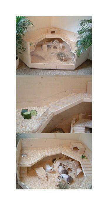 Stunning Meerschweinchen K fige S este Haustiere Schrank Ideen Hase Kaninchen Selfmade Spielzeug Sonstiges Kinderzimmer Basteln