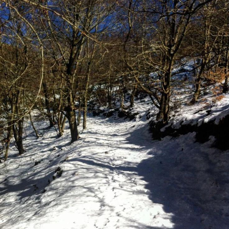 cuando se te ilumina el alma #montseny #matagalls #walking #snow #neu #nieve #senderismo #barcelona