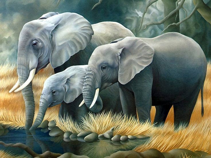 3D Elephants Family HD Wallpaper