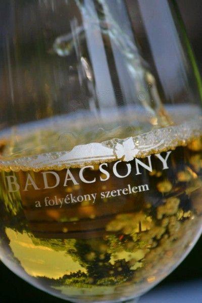 Wine of the #lake #Balaton #Hungary #Europe #gastronomy #wine #winery