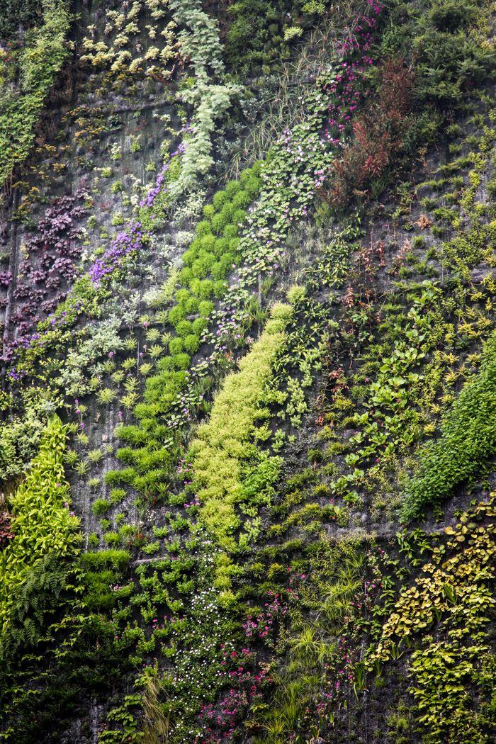 Best 25 Vertical Garden Design Ideas On Pinterest