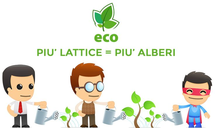 lattice e Aloe