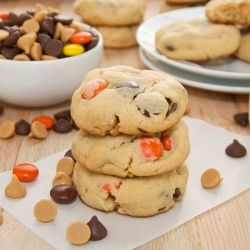 Peanut Butter Pudding Cookies....bursting with milk chocolate chips, peanut butter chips, and Reese's Pieces.