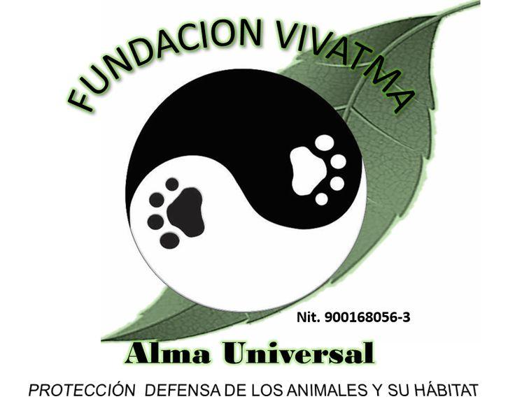 Rediseño de logo Fundacion Vivatma