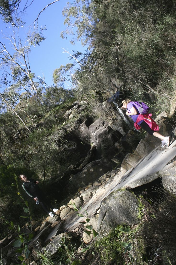 Hike the Heysen Trail, SA. Adelaide Hills section Waterfall Gully to Mt.Lofty - exhilarating