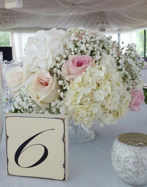 Matrimonio Tema Ortensie : Oltre fantastiche idee su matrimonio con rose bianche