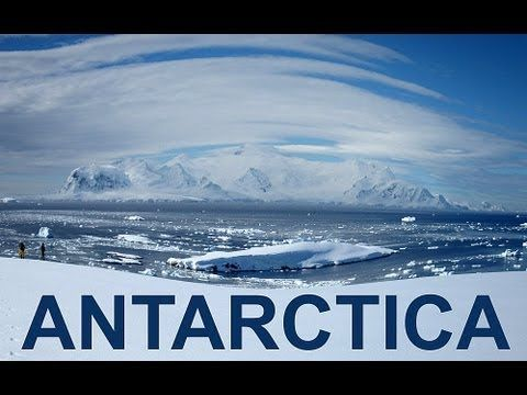 65 best antarctica south pole images on pinterest antarctica trip to antarctica 2014 hd youtube publicscrutiny Image collections