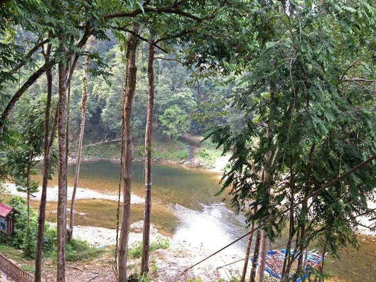 Lake Kenyir, Kelah Sanctuary. Hiking path ambiance ..