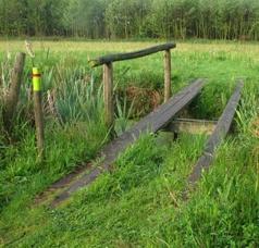 Wandelen in de provincie Utrecht kan o.a. in de natuurgebieden van het Utrechts Landschap. Op deze pagina staan verschillende wandelroutes. Naast wandelroutes zijn er o.a. ook fietsroutes beschikbaar.