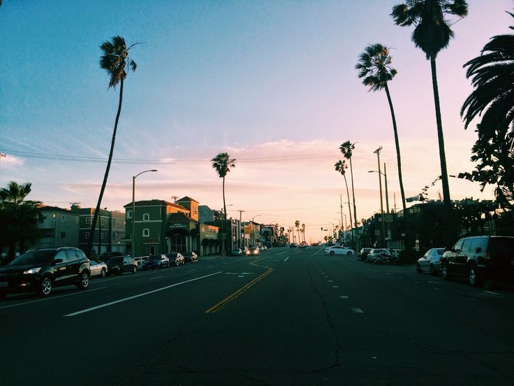 Venice Beach Sunset with palm trees, California