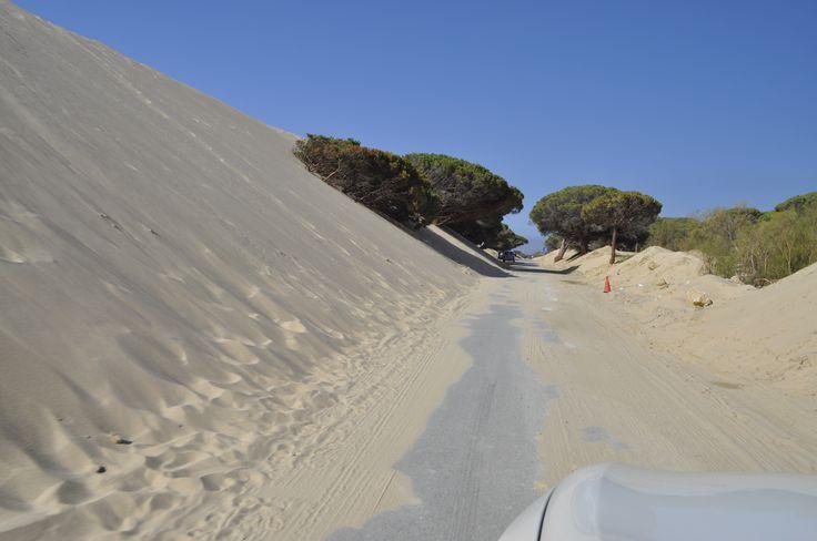 somewhere in spain...dunas!