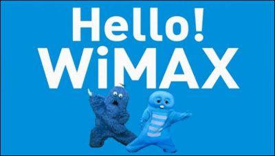 【新年】2014年1月のWiMAXキャンペーンを徹底比較!So-netは30,000円分のポイントプレゼント!RaCoupon WiMAX1年プランは終了 : WiMAX Mobiler