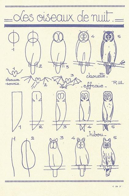Owls - french art tutorial