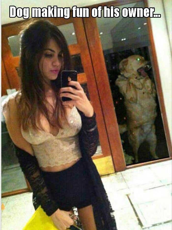 Muy sexy y un perro  te arruina la foto