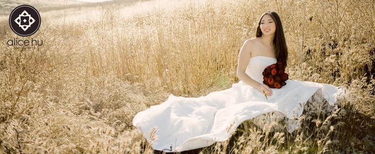 Ideas: Dresses Pictures, Gorgeous Pictures, Dresses Ideas, Trash The Dresses, Wedding Portraits, Closet Ideas, Wheat Fields, Photography Ideas, Leah Bride