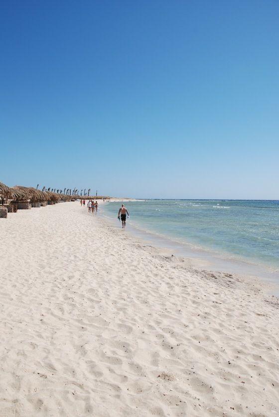 """Mar Rosso Marsa Alam Egitto - la """" spiaggia del dugongo"""" - di Elisabeth Bianchi"""
