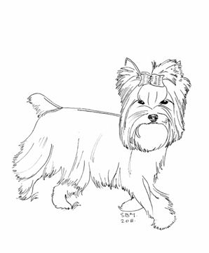 80 best la dean russo images on pinterest coloring for Yorkie coloring pages