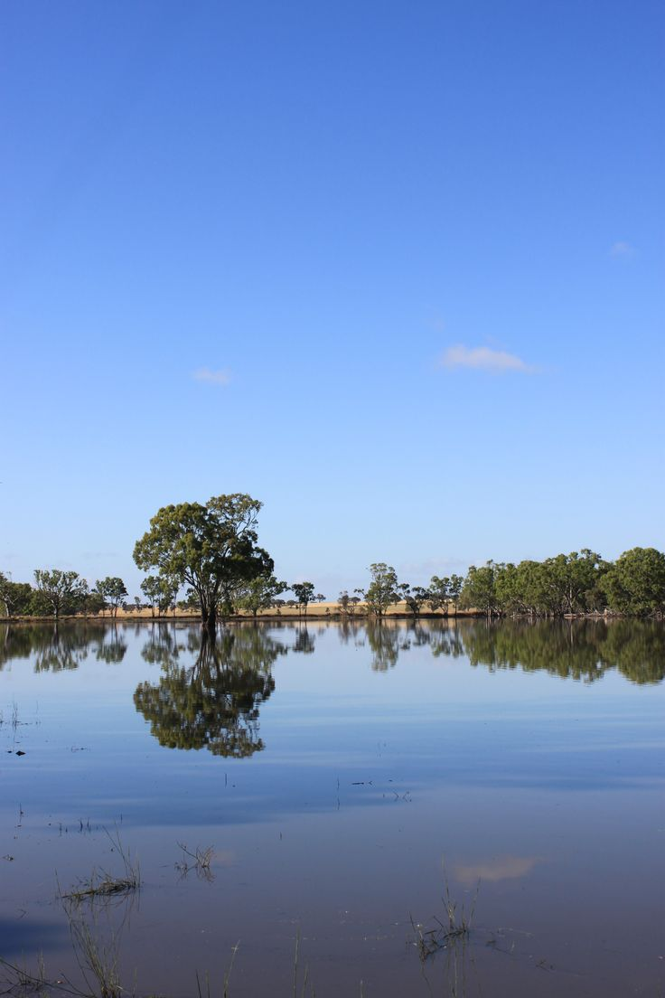 Cockatoo Swamp, east of Miram and west of Diapur.