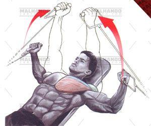 Crucifixo com Cabo - Tudo sobre esse exercício para peito! Ilustrações, como executar passo a passo, músculos envolvidos, variações, e mais!