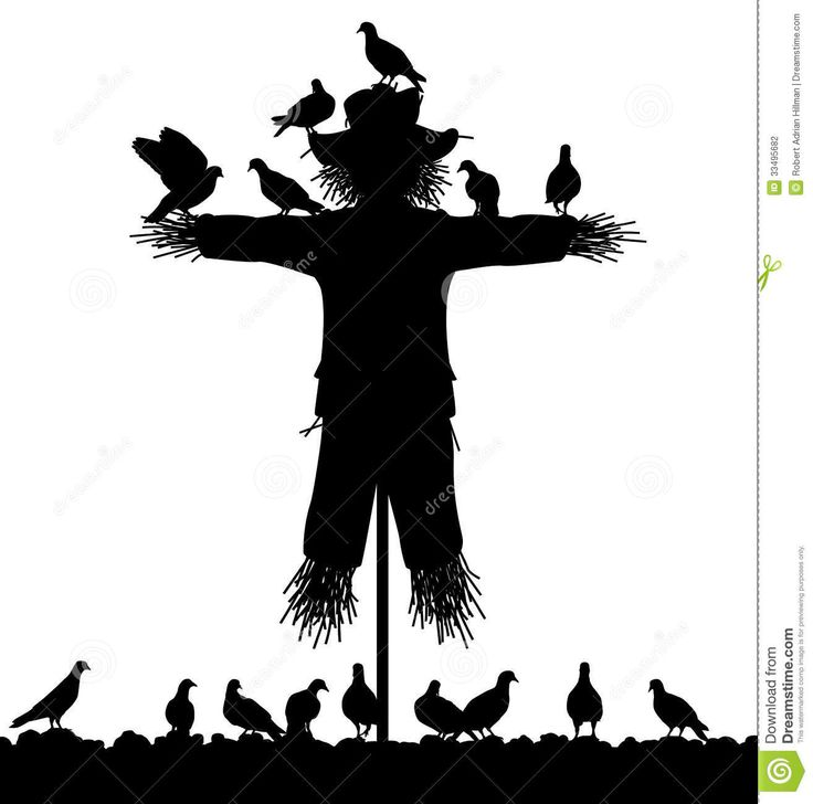 87 best SCARECROW images on Pinterest | Crows ravens ...