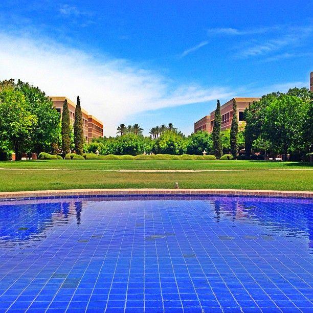 Why, hello gawgeous! ASU West Campus Arizona State ...