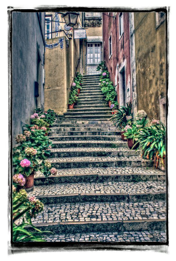 Sintra Steps - Sintra, Portugal