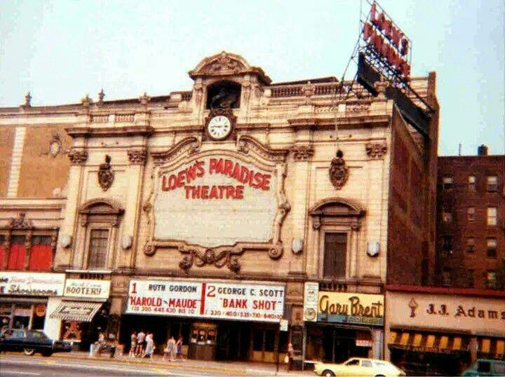 24 best images about loews paradise movie theatre bronx