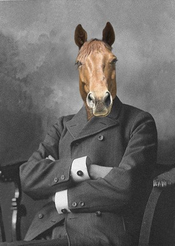 Mister Ed Vintage 8x10 Horse Print by AnimalFancy on Etsy