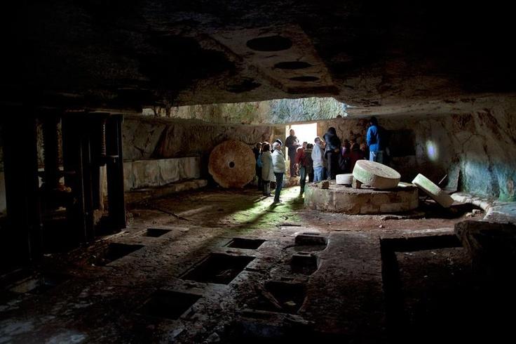 Con la cooperativa Serapia si diventa esploratori del territorio, delle grotte e dei tanti frantoi ipogei.    Per saperne di più su questo evento, visitate il nostro portale: http://www.pugliaevents.it/it/gli-eventi/ipogea-viaggio-nel-mondo-dei-frantoi-ipogei