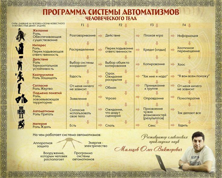 Программа системы автоматизмов человеческого тела
