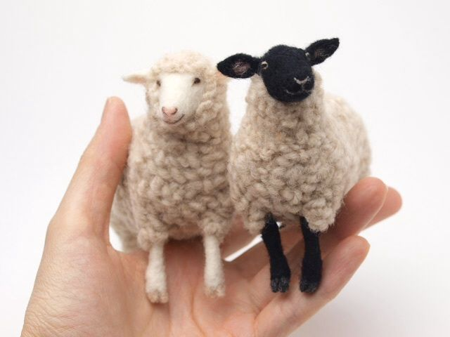 Felted Sheep!