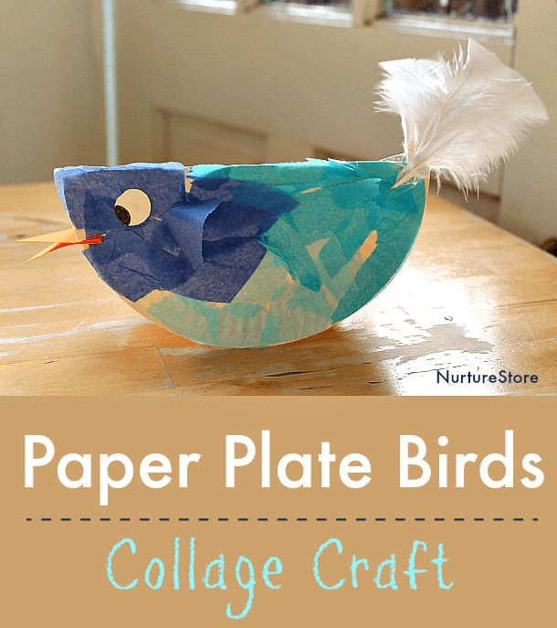 paper plate bird craft 1992 best images on activities for 5103