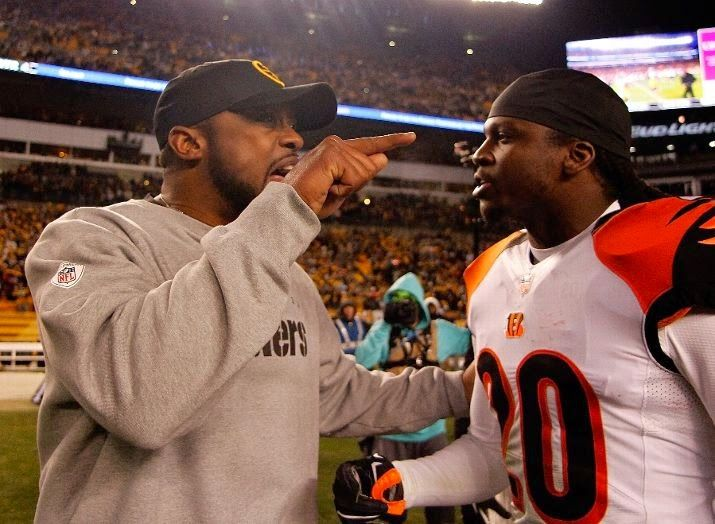 Steelers Head Coach Mike Tomlin has a few words for Reggie Nelson of the Bengals, 2014