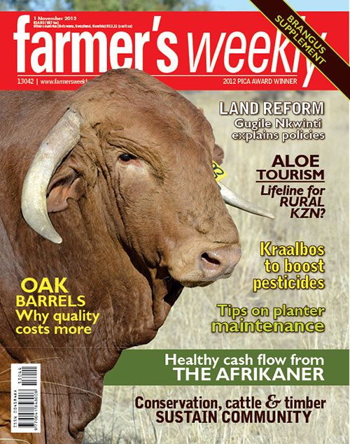 1 November - 'Healthy cash flow from the Afrikaner'.