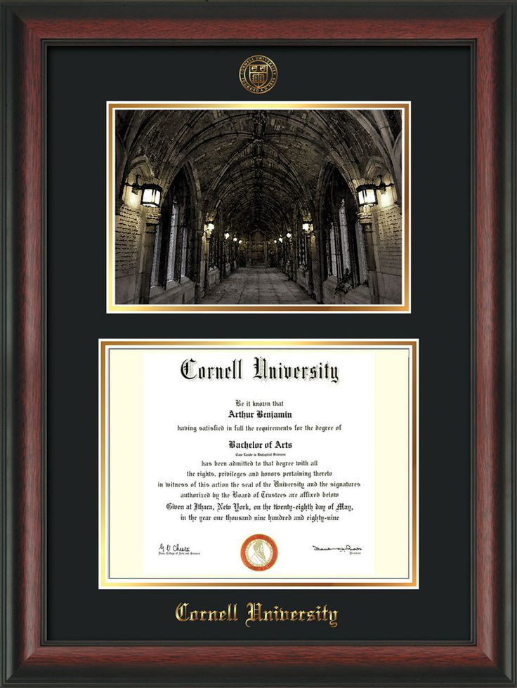 Cornell U Diploma Frame-Rosewood-War Memorial Photo-Black on Gold – Professional Framing Company