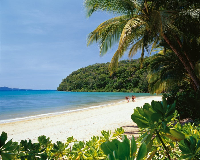Dunk Island, Australia.  I stood in this exact place to take a photo when I was there.  Gorgeous!