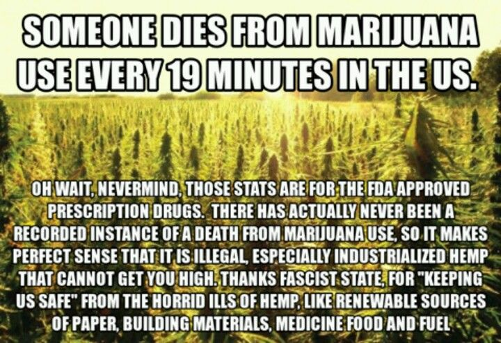 Marijuana is far less dangerous than alcohol, tobacco, prescription drugs, cocaine, meth, etc. Make easy, small mints for safe pain relief or enjoyment! MARIJUANA - Guide to Buying, Growing, Harvesting, and Making Medical Marijuana Oil and Delicious Cand