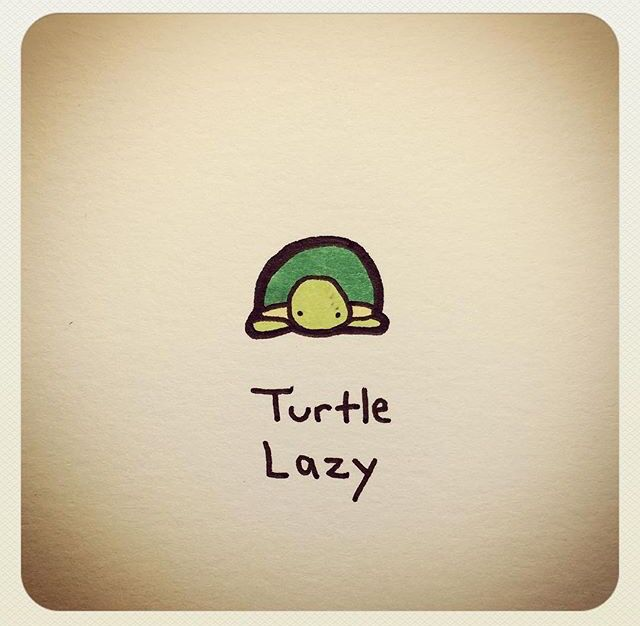 Best 25 Cartoon turtle ideas on Pinterest Donut pictures Cute